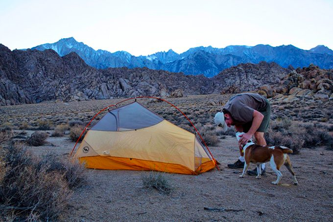 A man camping with a dog