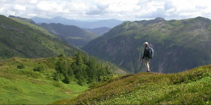 hiker in tongass national forest