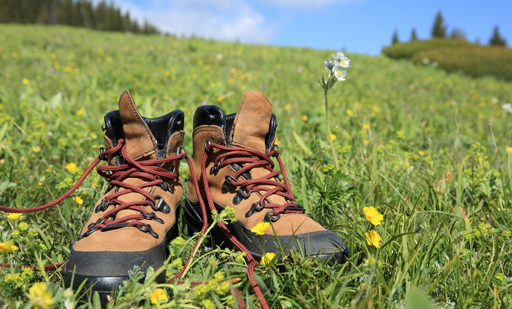 hiking-shoes on the grass in the sun