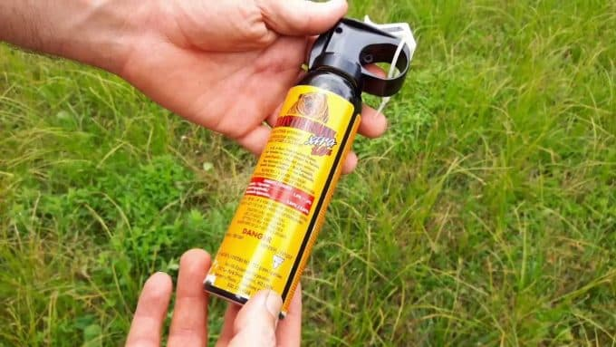 man-hold-in-hands-bear-spray