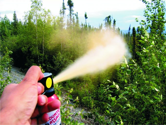 range in which the bear spray can burst