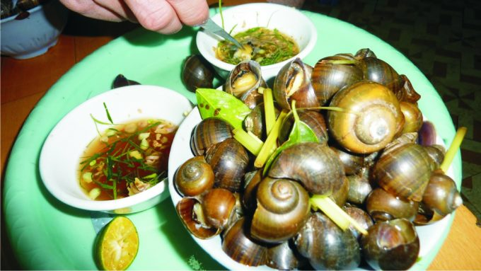 snail-dishes