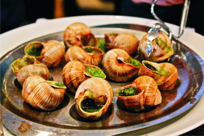 snails-on-the-plate