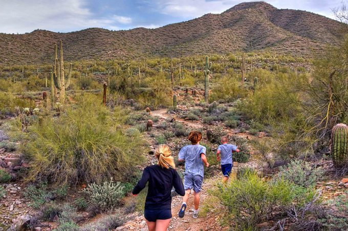 hikers on Sonoran Desert Trail