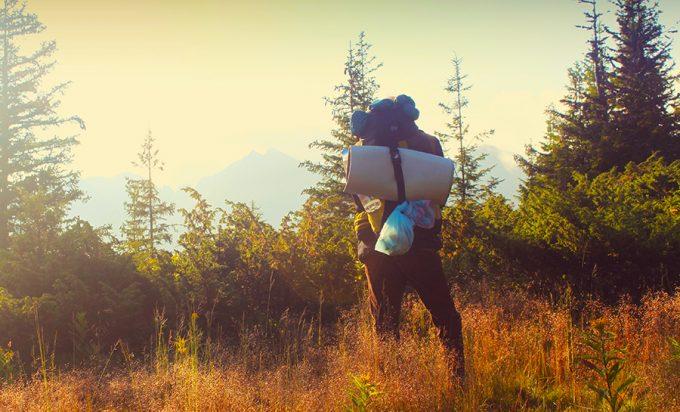 hiker hiking in wilderness