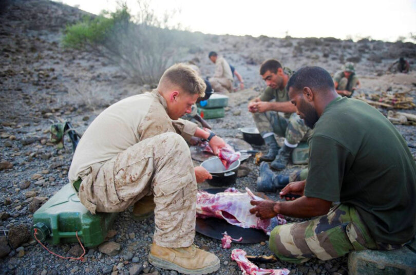 Soldiers finding food in the wild