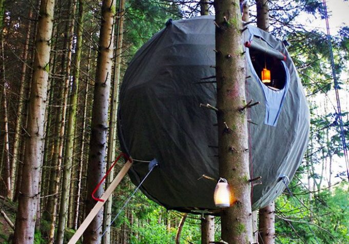 ball tree tent
