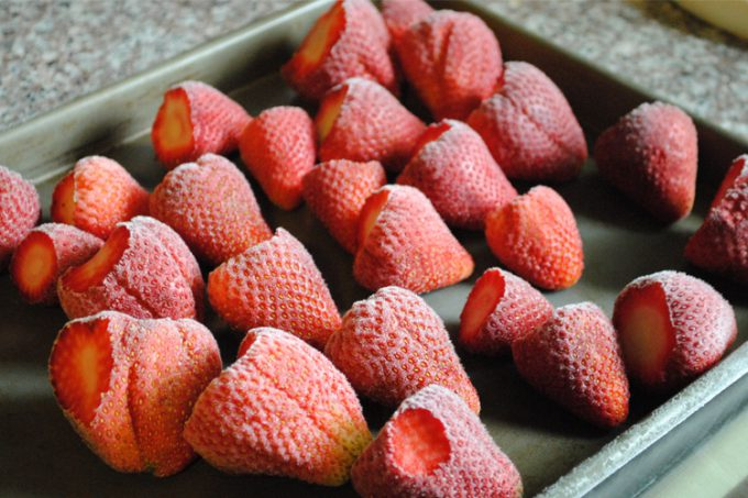 freeze drying strawberries
