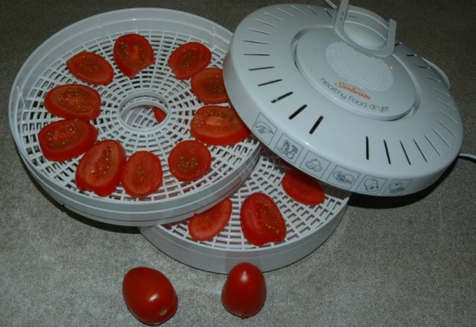tomatoes in food dehydrator