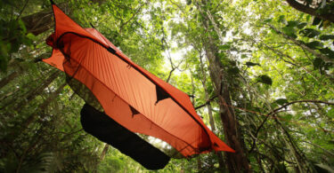 tree hanging tents