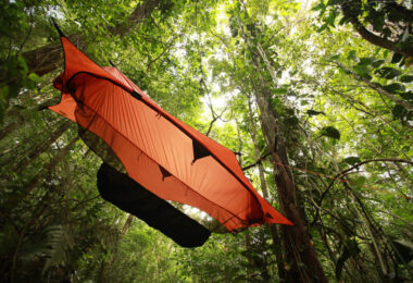 tree hanging tents